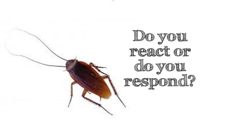 react-or-respond